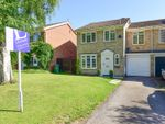 Thumbnail to rent in Mayfield Gardens, Hersham, Walton-On-Thames