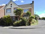 Thumbnail for sale in Harp Chase, Taunton
