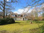 Thumbnail for sale in Benenden Road, Biddenden, Kent