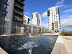 Thumbnail to rent in Pegasus Way, Gillingham