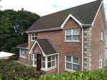 Thumbnail to rent in 31 Bracken Grove, Newry
