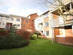 Thumbnail to rent in Silchester Place, Winchester