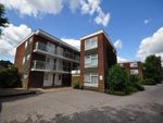 Thumbnail to rent in Barnfield Road, Crawley