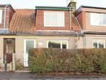 Thumbnail to rent in Bute Cottage, Knowhead, Freuchie