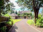 Thumbnail for sale in Salmons Lane, Whyteleafe