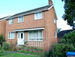 Thumbnail to rent in Tuddenham Road, Ipswich