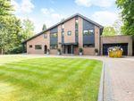Thumbnail to rent in Bishops Walk, Croydon