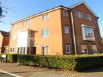 Thumbnail to rent in Sir John Newsom Way, Welwyn Garden City