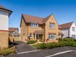 Thumbnail for sale in Rossiter Close, Taunton, Somerset