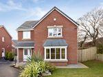 Thumbnail to rent in Waterloo Gardens, Monbank, Newport