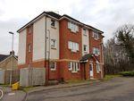 Thumbnail to rent in Cooper Crescent, Ferniegair, Hamilton