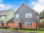 Thumbnail for sale in Rectory Road, Rochford, Essex