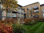 Thumbnail to rent in Kingsley Walk, Cambridge, Cambridgeshire