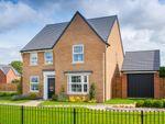 """Thumbnail to rent in """"Holden"""" at Shipton Road, Skelton, York"""