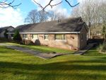 Thumbnail to rent in Ettrick Road, Selkirk