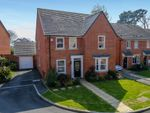 Thumbnail for sale in Beacon Drive, Newton Abbot