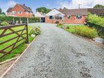 Thumbnail to rent in Gwern-Y-Brenin, Oswestry