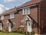 "Thumbnail to rent in ""Hopton"" at Oteley Road, Shrewsbury"