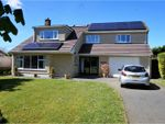 Thumbnail for sale in Park View, Haverfordwest
