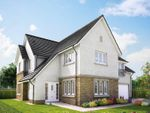 "Thumbnail to rent in ""The Lowther"" at Jardine Avenue, Falkirk"