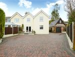 Thumbnail to rent in Salisbury Road, Pimperne, Blandford Forum, Dorset