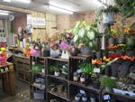 Thumbnail for sale in Florist S36, Stocksbridge, South Yorkshire