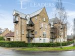 Thumbnail to rent in Ravenswood Avenue, Ipswich