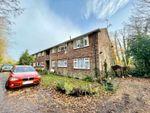 Thumbnail to rent in The Dell, Horley