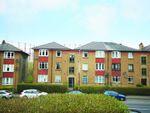 Thumbnail to rent in 1/1, 102, Dorchester Avenue, Kelvindale