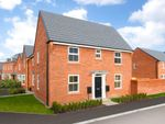"Thumbnail to rent in ""Hadley"" at Park View, Moulton, Northampton"