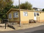 Thumbnail to rent in Ash Grove, Woodland Park, Waunarlwydd