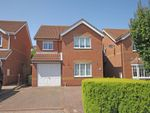 Thumbnail for sale in Honeysuckle Court, Cleethorpes