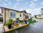Thumbnail to rent in The Marigolds Shripney Road, Bognor Regis