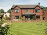 Thumbnail to rent in Ashbank, Skirsgill Lane, Eamont Bridge, Penrith, Cumbria