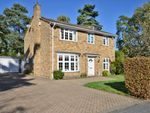 Thumbnail to rent in Hillsborough Park, Camberley