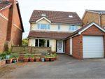 Thumbnail to rent in Tamarisk Close, Basingstoke