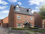 "Thumbnail to rent in ""The Blakesley"" at Boughton Green Road, Northampton"