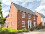 "Thumbnail to rent in ""Avondale"" at Shipton Road, Skelton, York"