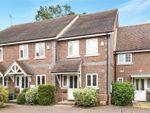 Thumbnail for sale in Alder Mews, Sindlesham, Wokingham, Berkshire