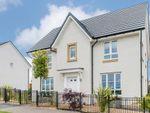 "Thumbnail to rent in ""Craigston"" at Prestongrange, Prestonpans"