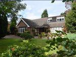 Thumbnail for sale in Broad Lane South, Wednesfield, Wednesfield
