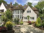 Thumbnail for sale in Beverley Lane, Coombe Hill