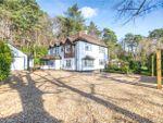 Thumbnail for sale in Bellew Road, Deepcut, Camberley, Surrey