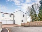 Thumbnail to rent in Kingdon Avenue, Prickwillow, Ely