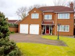 Thumbnail for sale in Spafford Close, Marton