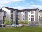 Thumbnail to rent in Cattofield Square, Aberdeen