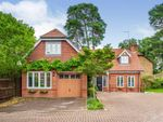 Thumbnail for sale in Sandy Close, Crawley Down, Crawley