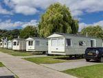 Thumbnail to rent in Warren Road, Devon