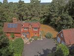 Thumbnail to rent in Clumps Road, Lower Bourne, Farnham, Surrey