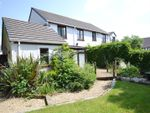 Thumbnail to rent in Maple Avenue, Haverfordwest